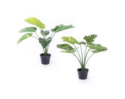 Dirbtinis augalas GODOFRID