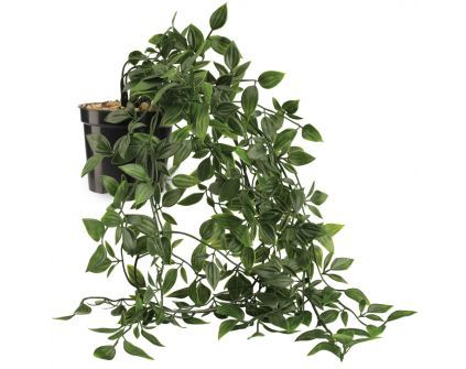 Dirbtinis augalas OLIVER